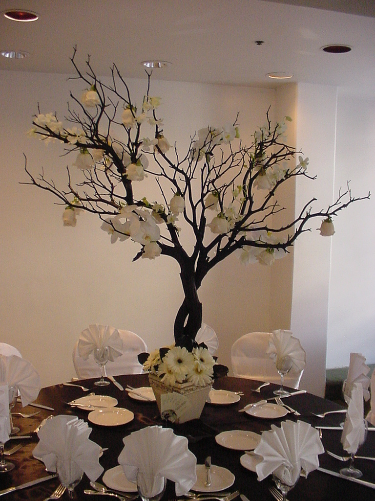 Style trend manzanita branches wishing trees the